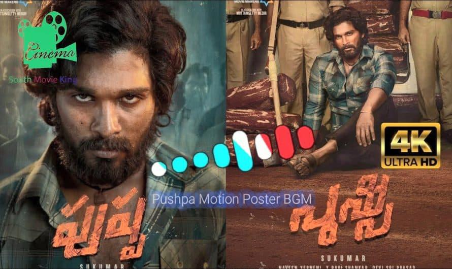 Pushpa Telugu Movie BGM Ringtones